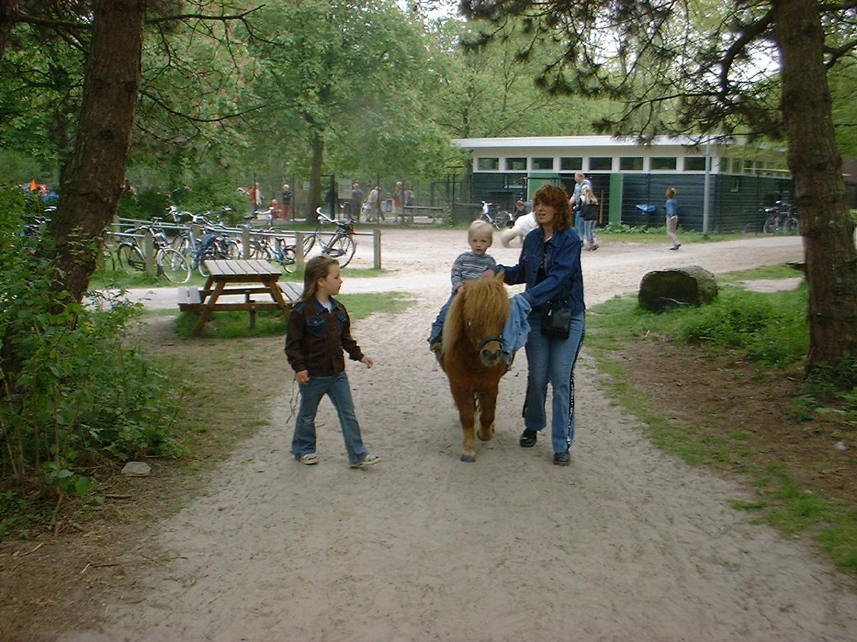 Ponyverhuur Stadspark 1