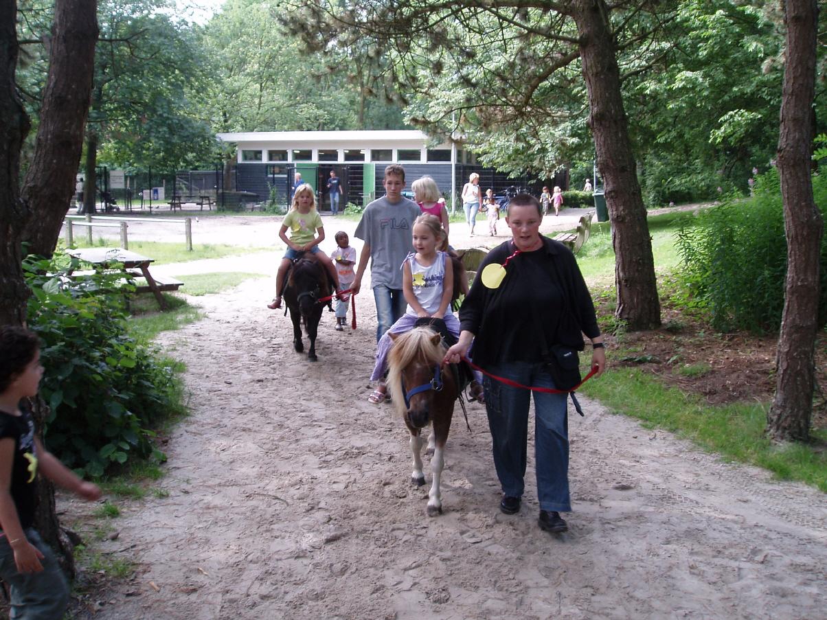 Ponyverhuur Stadspark 3